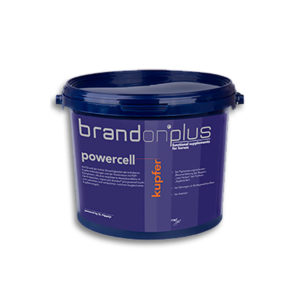 St. Hippolyt - Brandon plus powercell kupfer 3kg
